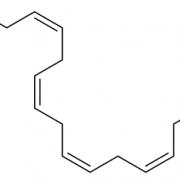 EPA in OMEGA-3 CAS 10417-94-4