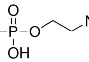 O-磷酸乙醇胺 CAS号 1071-23-4 结构式