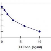 三碘甲状腺素-T3-ELISA-定量试剂盒