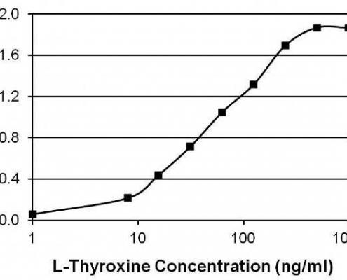 抗甲状腺素T4抗体-酶联免疫吸附测定(ELISA)