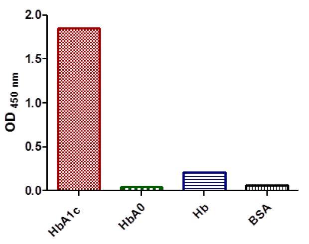 抗糖化血红蛋白抗体-酶联免疫吸附测定(ELISA)2