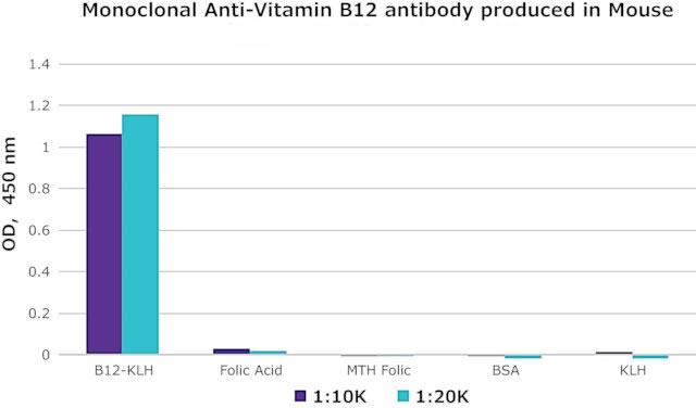 抗维生素B12抗体