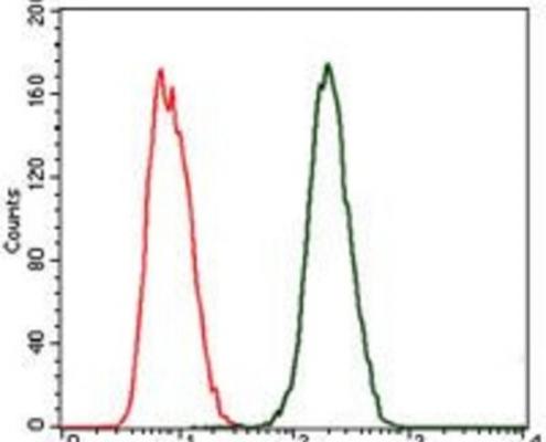 抗C反应蛋白抗体-in-flow