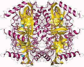 无机焦磷酸酶(酵母)CAS 9024-82-2 结构式