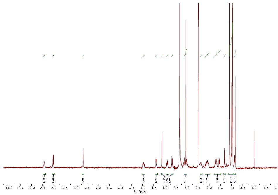 核磁图谱 PF-07321332 CAS 2628280-40-8