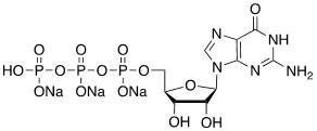 鸟苷-5'-三磷酸三钠盐 CAS 36051-31-7 结构式