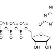 5-甲基胞苷 5'-三磷酸酯 CAS 327174-86-7 结构式